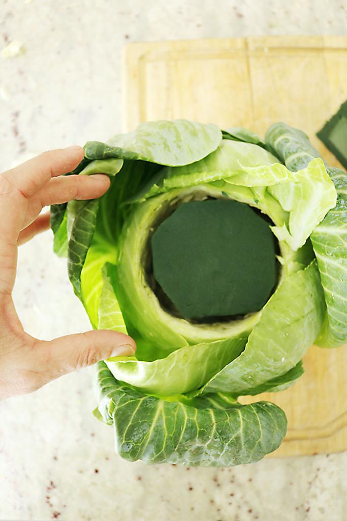 Cabbage-base-for-flower-arrangement