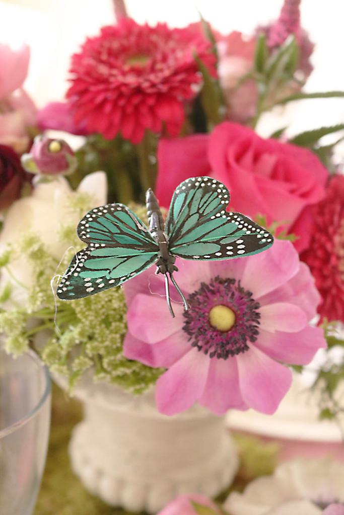 garden-party-butterfly