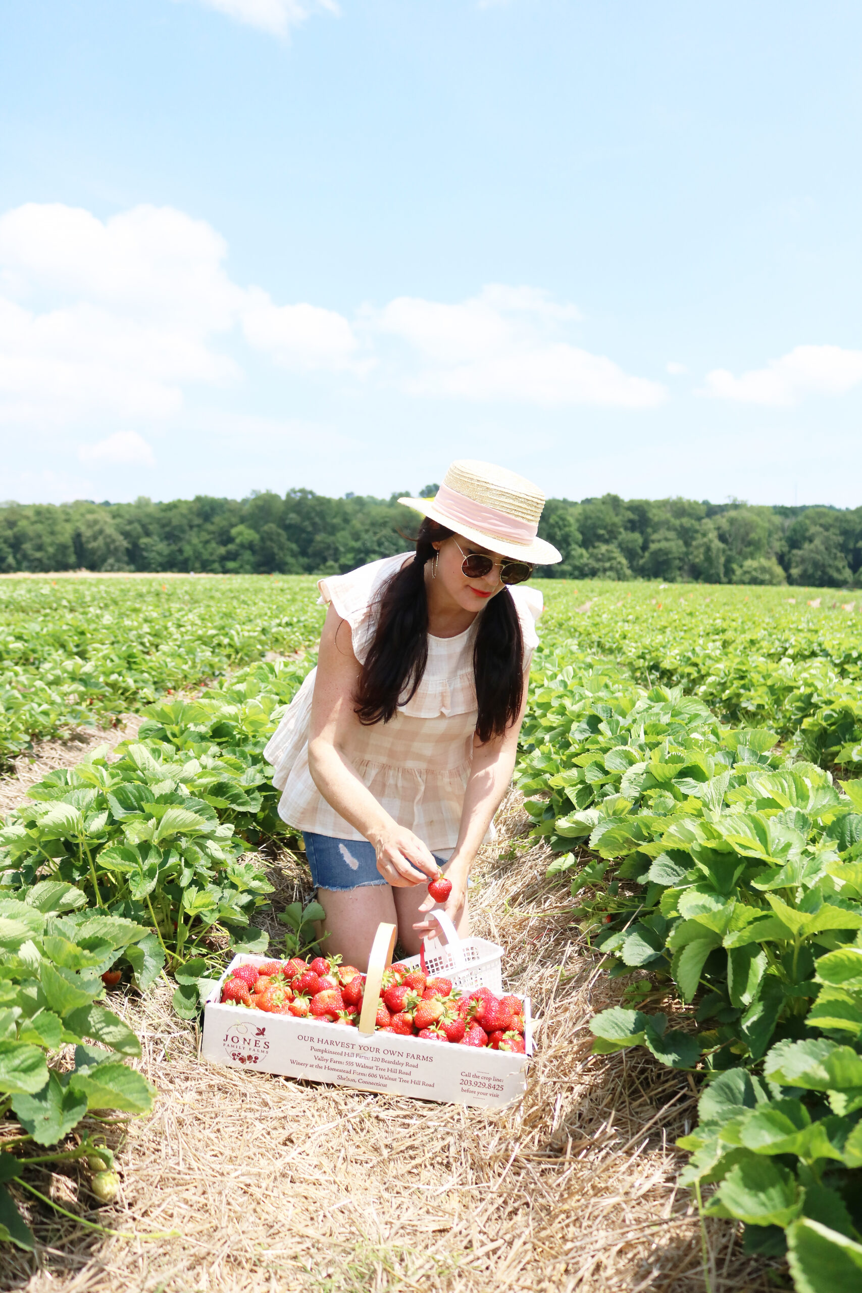 Strawberry Fields Forever, Annual Strawberry picking trip, summer fruit picking, Jones family Farm, New England life, What to wear when strawberry picking    Darleen Meier Top CT Lifestyle Blogger #darleenmeier #strawberryfields
