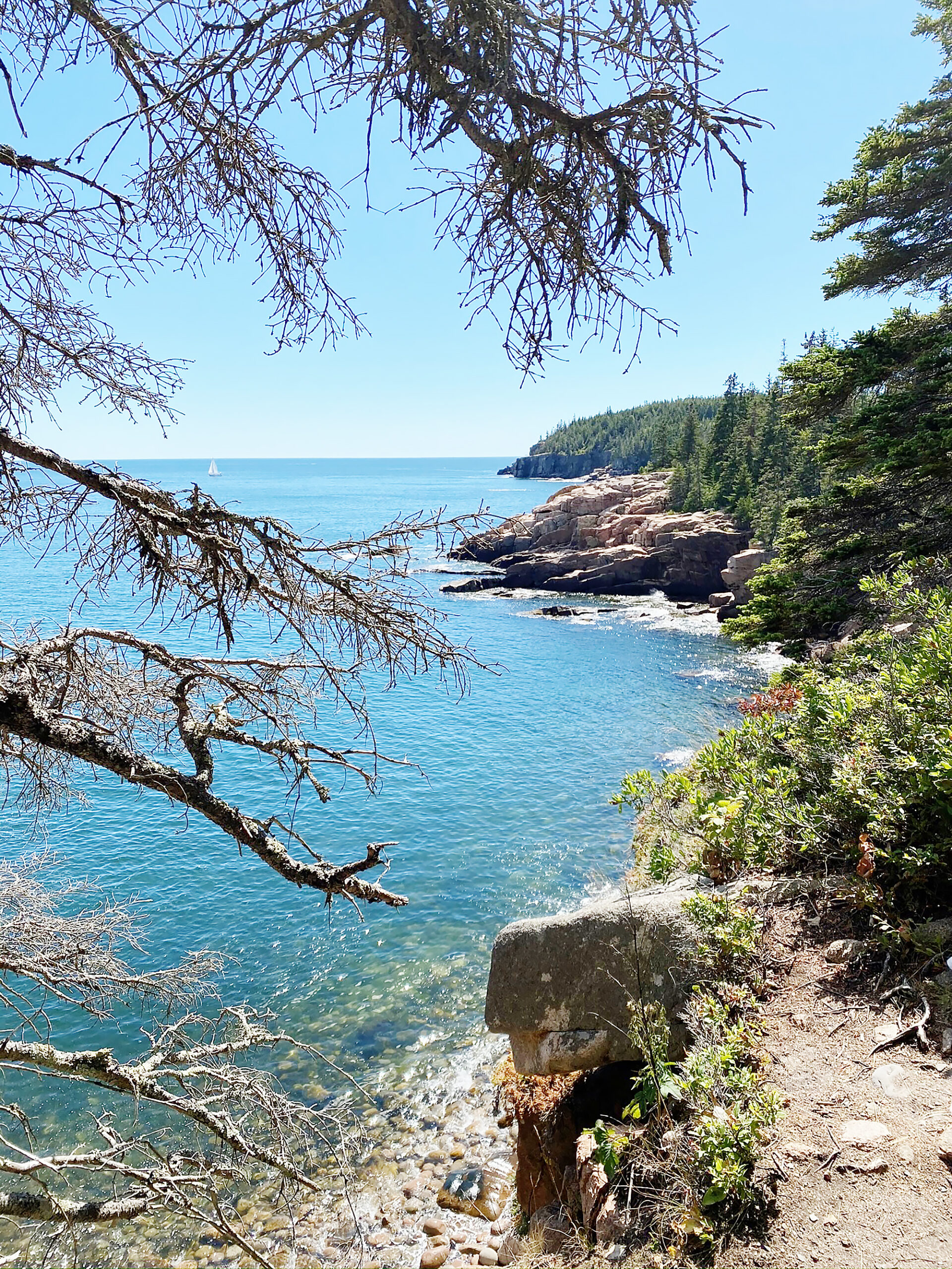 Hiking Acadia National Park with Kids and Dogs, What to do in Acadia National Park with Kids || DarlingDarleen.com Top Lifestyle CT Blogger Darling Darleen #acadia #acadianationalpark
